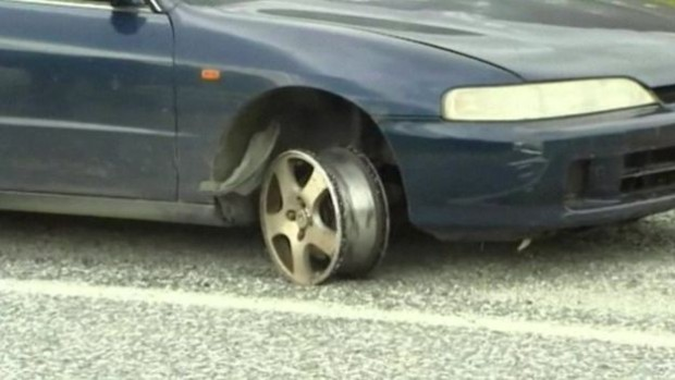 The sheep stopped the car when even road spikes had failed