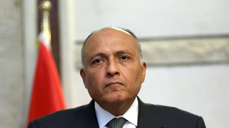 Egypt foreign minister says Libyan militant camps direct threat