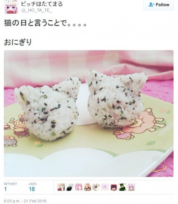 Some have celebrated by making cat-shaped food, like rice balls
