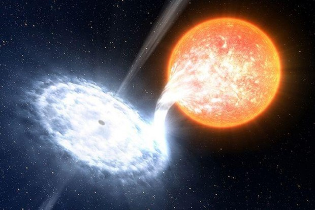 An artist's impression of a black hole devouring material from an orbiting star ESO/L. Calçada
