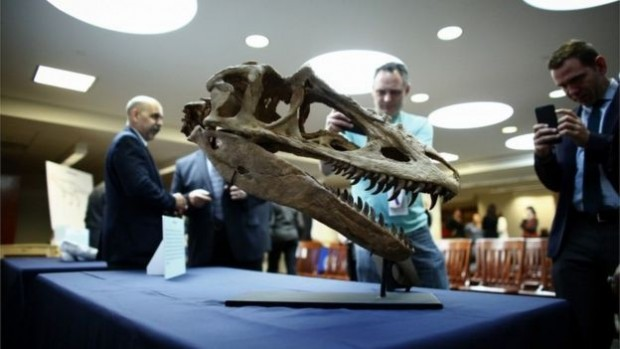 The US has returned 23 dinosaur fossils to Mongolia in the past three years