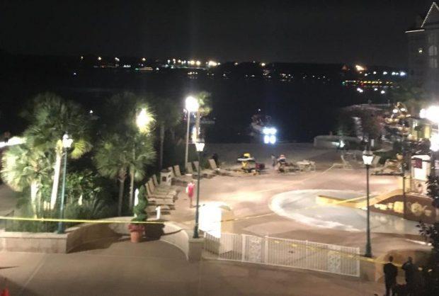 Grand+Floridan+scene+alligator+2